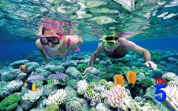 Lặn ngắm san hô ở khu quần đảo An Thới