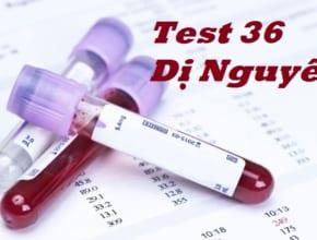 test 36 di nguyen