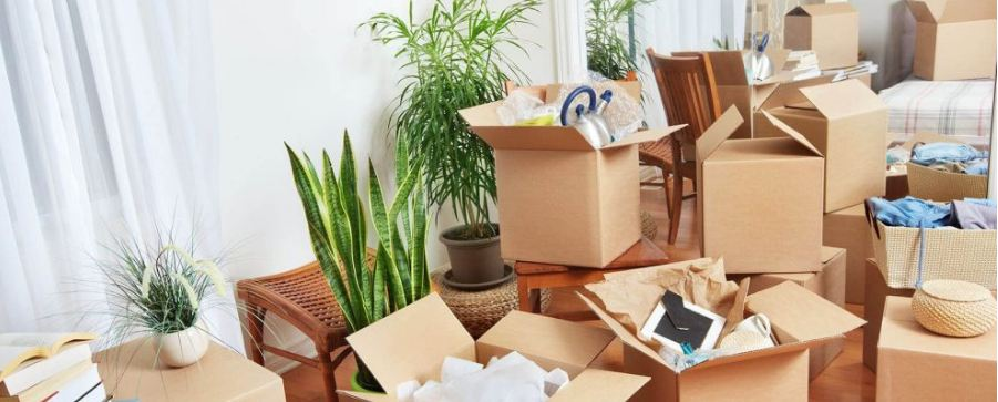 Bạn nên sắp xếp đồ đạc theo trọng lượng để dễ vận chuyển